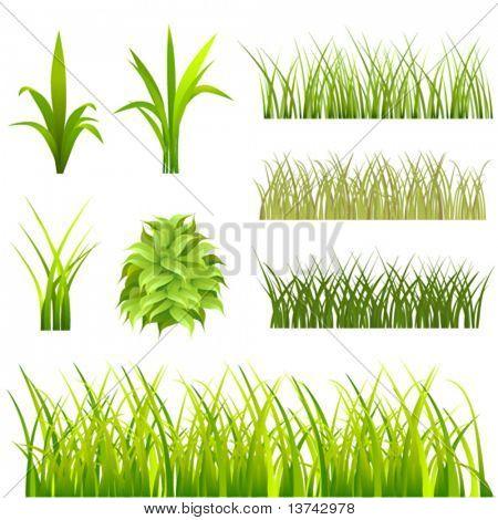 set of grass vector