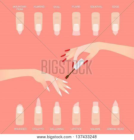 Different nail shapes. Woman fingers. Fingernails fashion trends on pink background. Vector design illustration