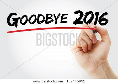 Hand Writing Goodbye 2016 With Marker