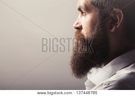 young handsome bearded man with long beard and stylish haircut in profile on dark studio background copy space