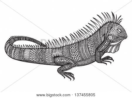 Hand drawn graphic ornate iguana with ethnic doodle pattern.Vector illustration for coloring book, tattoo, print on t-shirt, bag. Isolated on a white background.