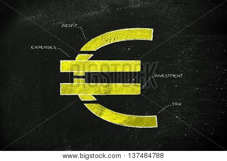 Split Euro Currency Symbol With Budgeting Captions