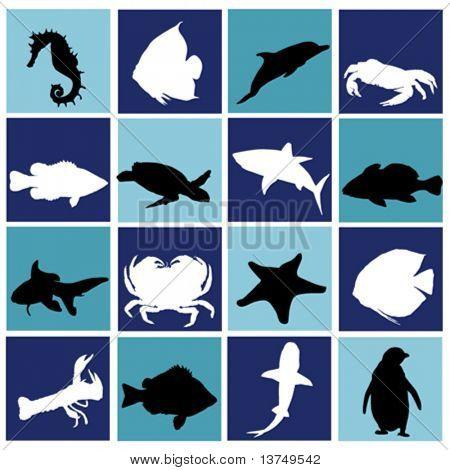 marine life set