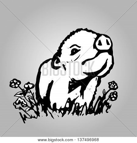 The graphic image of a little pig. Abstract illustration of a cute pig . Vector illustration