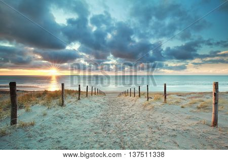 sunshine on sand path to sea beach Netherlands
