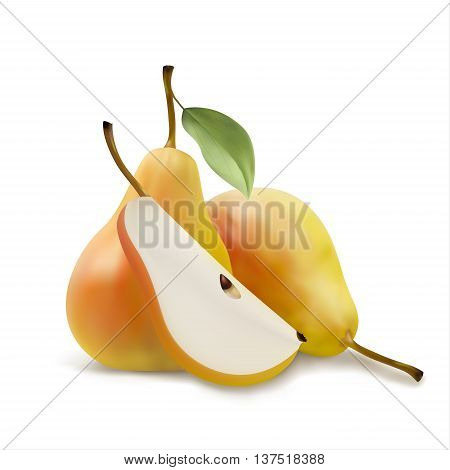 Realistic illustration of pears a piece pears pears with leaf vector illsutration isolated on white background