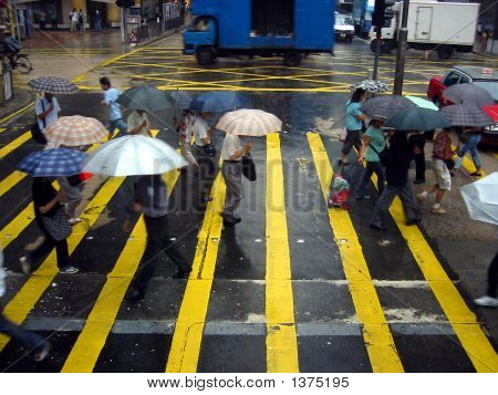 Crossing The Road In The Rain