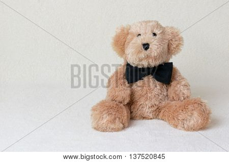 cute teddy bear with bow tie with beige backgrond