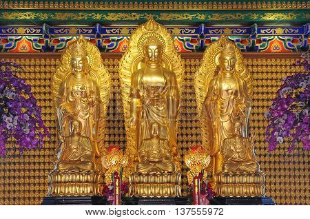 Golden Image of Bodhisattva Buddhas in Chinese temple, Thailand.