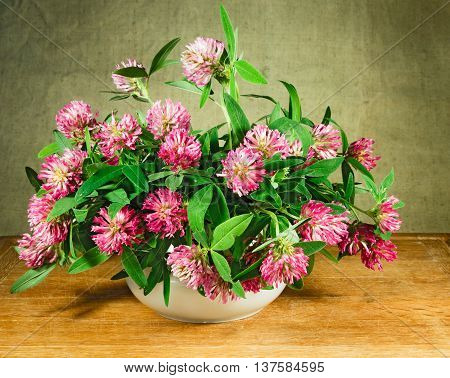 Alfalfa. Still life. Bouquet of meadow flowers in white pots standing on a wooden table. Rustic style.