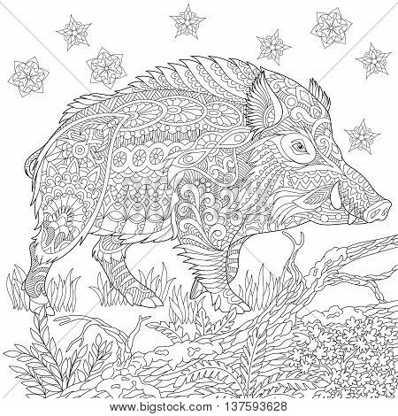 Zentangle stylized cartoon wild boar (razorback warthog hog pig). Hand drawn sketch for adult antistress coloring book page T-shirt emblem logo tattoo with doodle zentangle design elements.