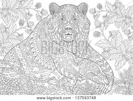 Zentangle stylized cartoon bear (grizzly bear) among blackberries or raspberries in woodland. Hand drawn sketch for adult antistress coloring book page with doodle zentangle floral design elements.