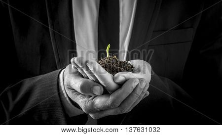 Businessman holding a germinating plant sprouting its first tiny green leaves growing in rich soil cupped in his hands in a close up view conceptual image.