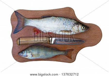 perch chub and a knife on a cutting board