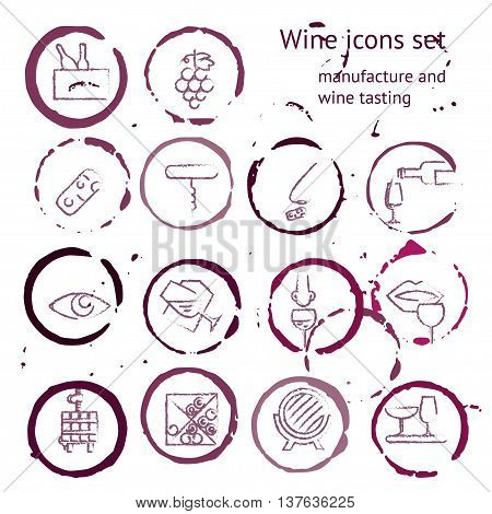 Wine icons collection. Pictogramms inside of wine stains. Can be used for wine shop wine company and club for typographic purpose. Maroon burgundy vinous purple pink colors