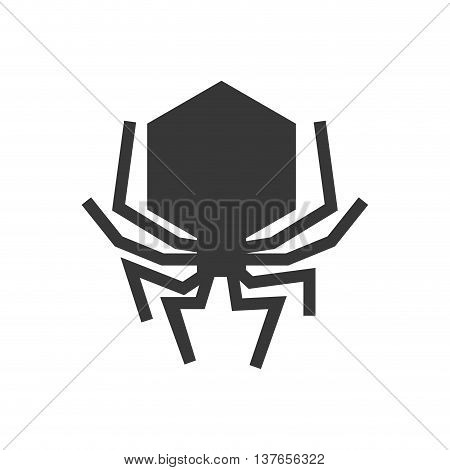 Insect concept represented by bug icon. Isolated and flat illustration