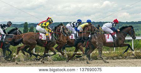 Horse race for the prize Jockey Cluba in Pyatigorsk,Caucasus,Russia.