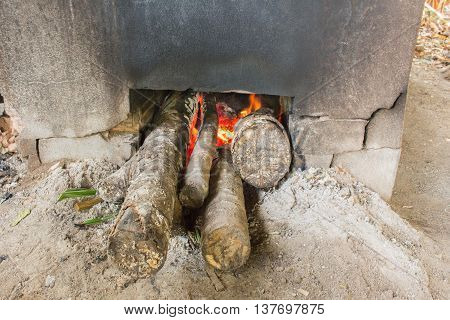 wood oven fire burning in the oven.
