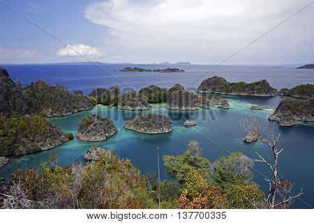 View over Pianemo. Fam Raja Ampat Indonesia