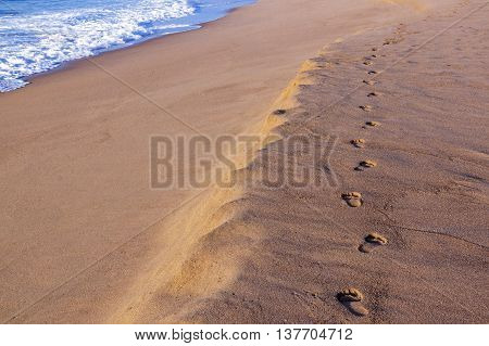 Sand Footprint Trail On Empty Beach  Next To Ocean