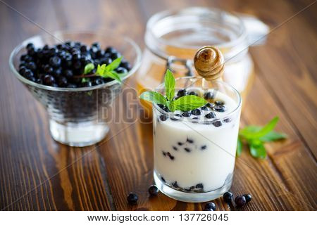 sweet homemade yogurt with blueberries and honey in a glass