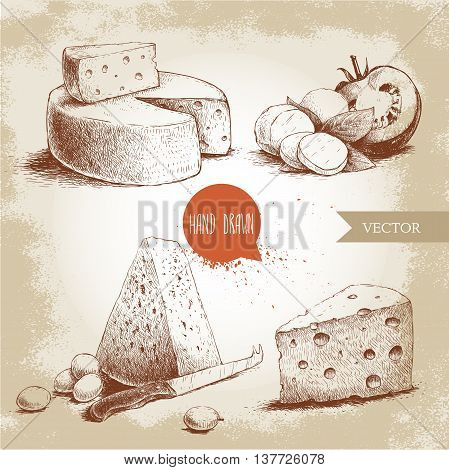 Hand drawn different type of cheese set. Edam mozzarella cheese with basil leafs and tomato round cheese head triangle of cheese. Vector organic food illustration. Vintage design. Sketch style.