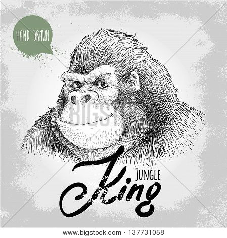 Hand drawn sketch style gorilla. Jungle King. Smiling big and dangerous monkey. Chinese new year symbol. Friendly t-shirt design.