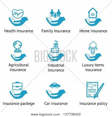 Vector insurance pictograms set- home auto health life insurance insurance luxury items agricultural and business risk insurance insurance package insurance policy poster