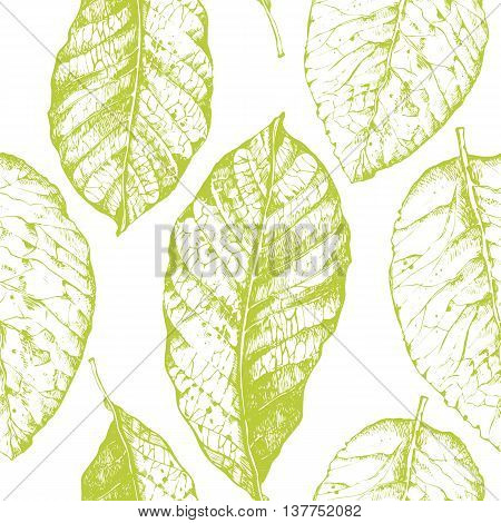 Floral pattern. Vector illustration with tobacco leaves.