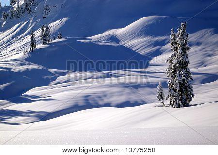 Peaceful Winterscape