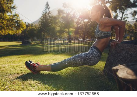 Strong Young Woman Doing Dips At The Park
