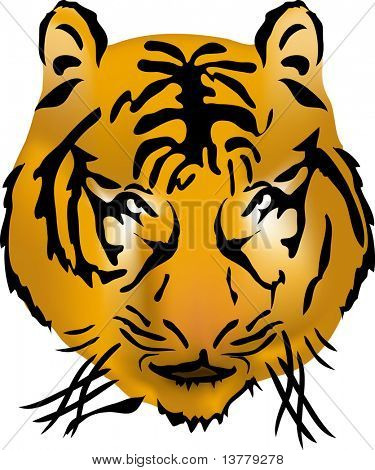 Bengal tiger head, vector illustration poster
