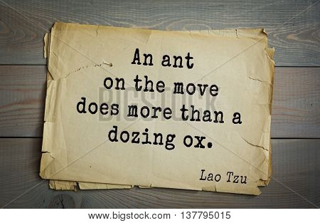 Ancient chinese philosopher Lao Tzu quote on old paper background. An ant on the move does more than a dozing ox.