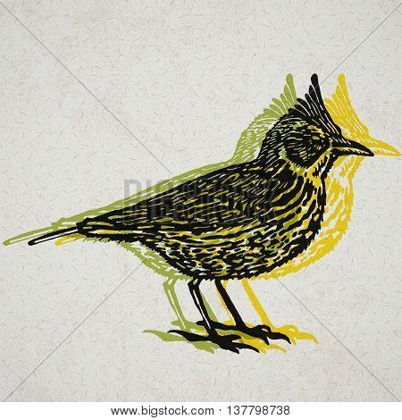 Crested lark bird sign. Desert bird. Vector engraved Illustration. Linocut Crested lark Isolated on old paper