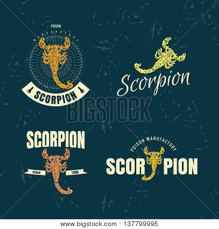 Vector colorful set with scorpion. The scorpion as main element of logotypes on dark blue background. Engraves vector design graphic element emblem logo sign identity logotype