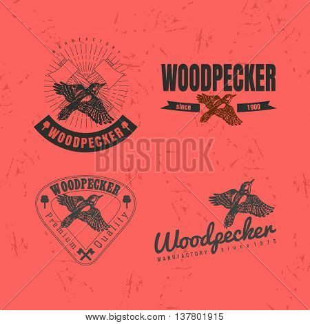 Vector colorful logo set with forest woodpecker bird. The woodpecker bird as main element of logotypes on red background. Engraves vector design graphic element emblem logo sign identity logotype