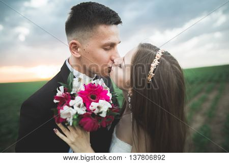 Wedding, Beautiful Romantic Bride and Groom Kissing and Embracing at Sunset.