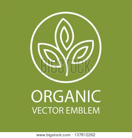 Vector abstract emblem, outline monogram, flower symbol, concept for organic shop or yoga studio, logo design template, linear logo design template, organic food and farming, green, vegan food concept