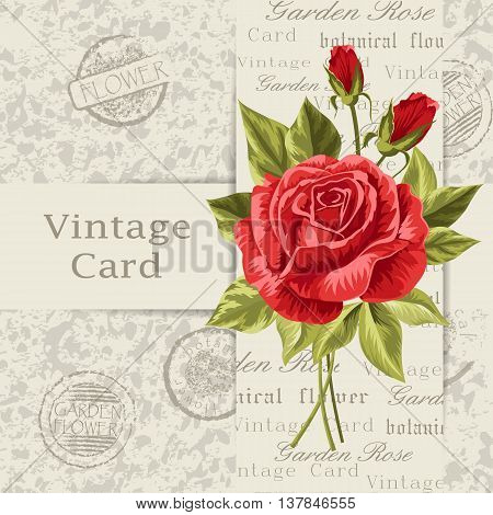 Beautiful flower for invitation card. Vintage postcard background. Vector illustration.