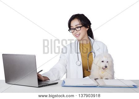 Portrait of female veterinarian working on the desk with a laptop and maltese dog isolated on white background