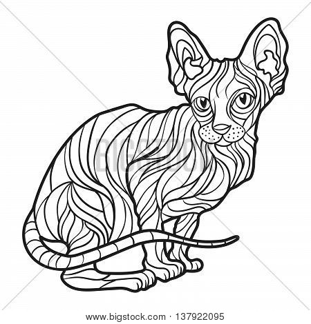 Vector monochrome hand drawn illustration of sphynx cat. Coloring page with high details isolated on white background. Boho style. Design for T-shirt greeting card or poster.