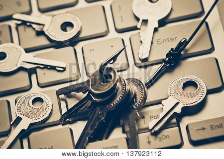 a fish hook with keys on computer circuit board / phishing / computer data theft concept