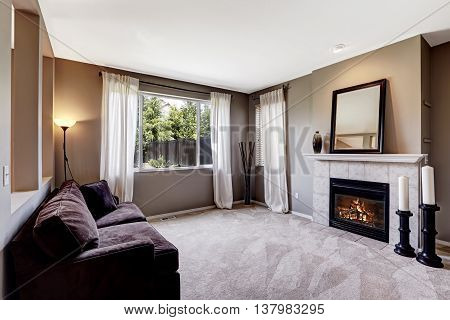 Living Room Interior With Carpet Floor And Dark Sofa