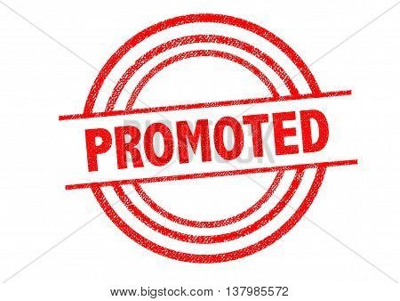 PROMOTED Rubber Stamp over a white background.