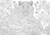 Zentangle stylized cartoon bear (grizzly bear) among blackberries or raspberries in woodland. Hand drawn sketch for adult antistress coloring book page with doodle zentangle floral design elements. poster