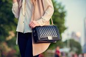 Woman carrying elegant purses bag at city park poster