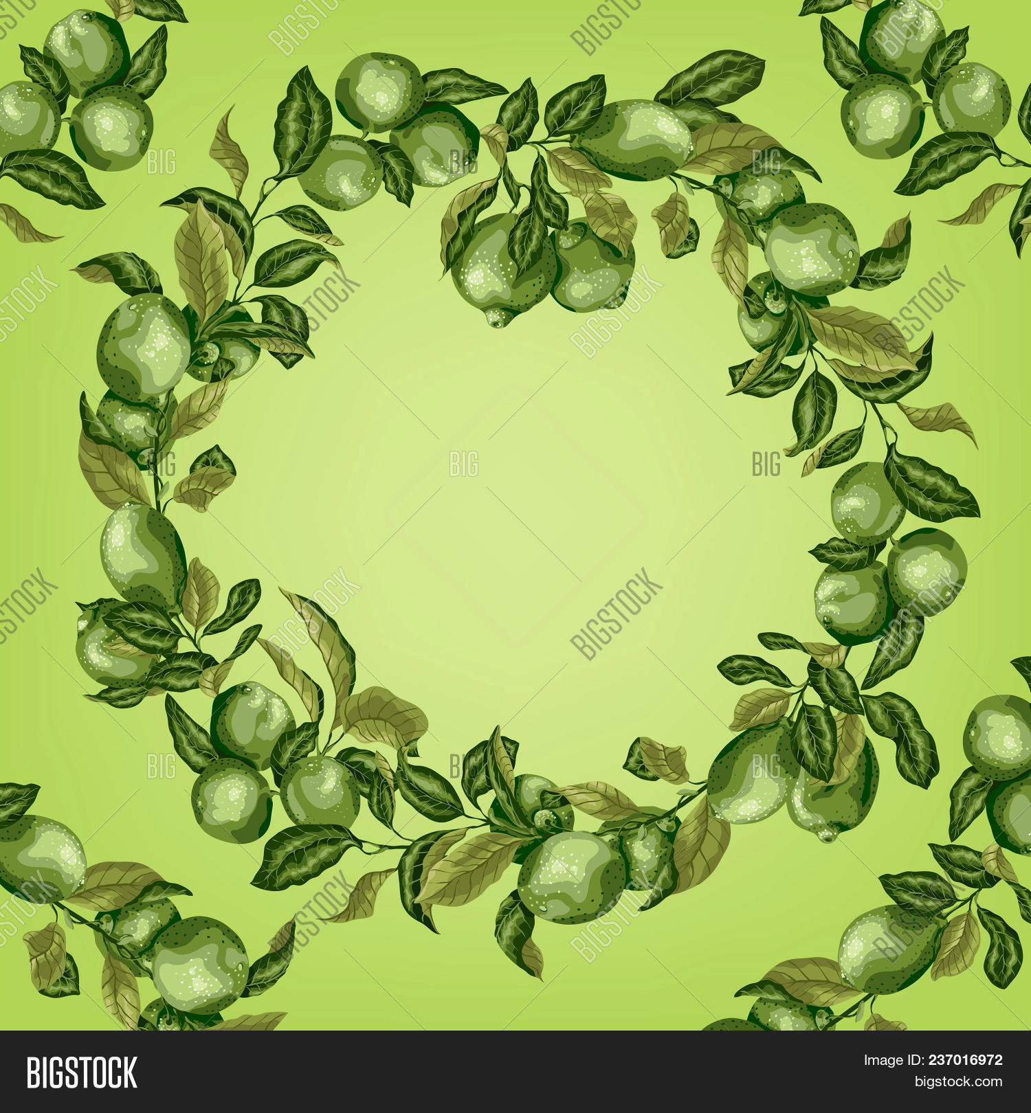 template circle frame vector photo free trial bigstock