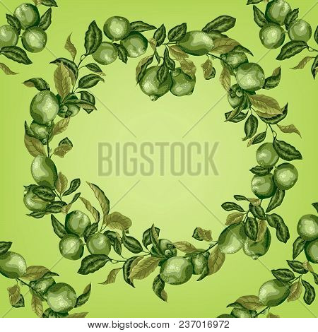 Template With Circle Frame Of Citrus Tree Branches. There Are Limes And Lemons With Leaves. Pattern