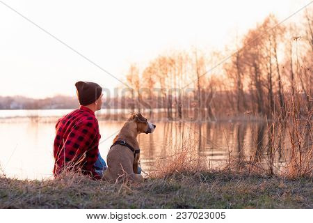 Young Man And Pet Dog Sit By Lake At Sunset In Spring Or Autumn. Male Person And Staffordshire Terri