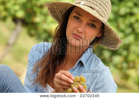 Woman picking grapes